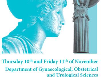 3rd International Symposium on Penile Prosthesis Rome 201